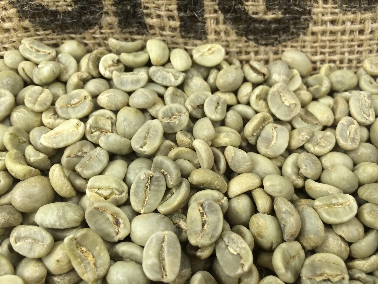 Honduras unroasted smokin beans coffee co smokin beans coffee co