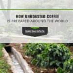 How Unroasted Coffee is Prepared Around The World